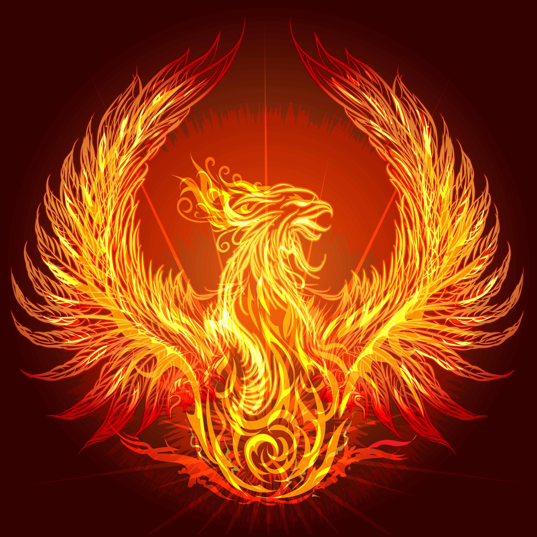 Burning phoenix image courtesy of DollarPhotoClub.com